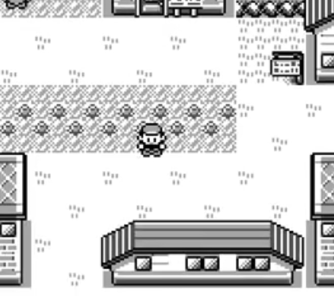 A screenshot of Pokemon Blue and Red, standing outside in a town.