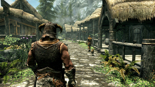 Skyrim walking through a village.