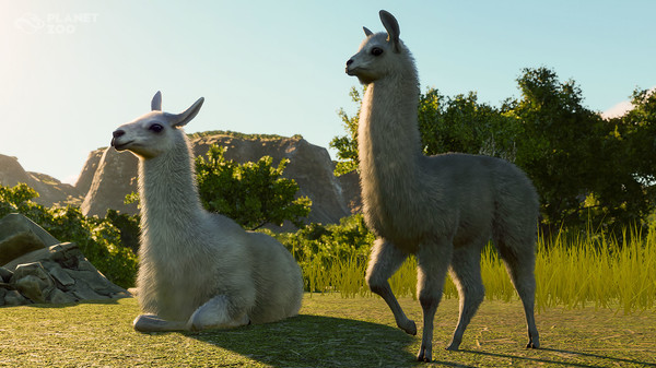 Planet Zoo's South America Pack DLC Is Out Now