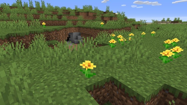 The Best Biomes In Minecraft